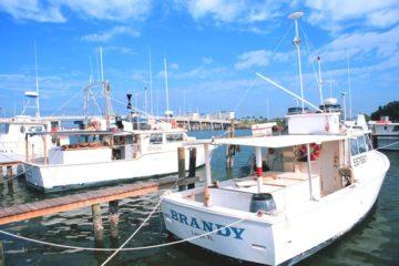 Brandy Commercial Boat