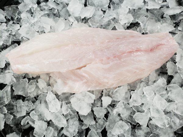Fresh Grouper Filet