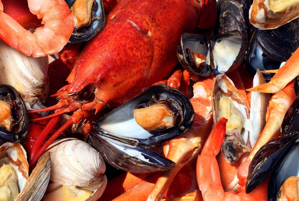 Home – Gulf Coast Seafood | Gulf Coast Seafood