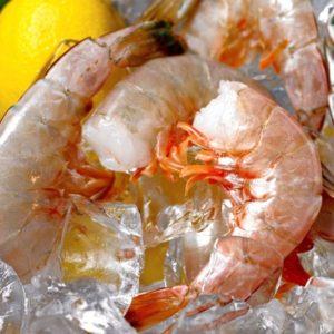 Jumbo Key West Pink Shrimp